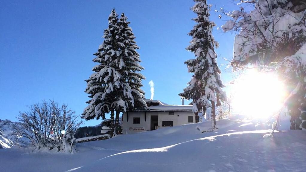 Berggasthof Almfrieden