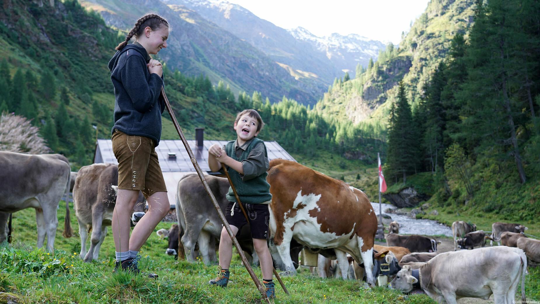 Almabtrieb Pettneu am Arlberg